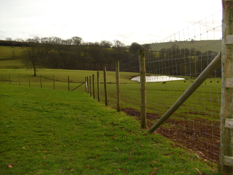 High Stock Fencing